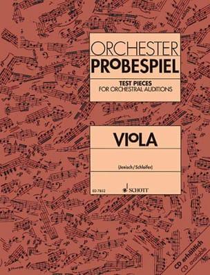Orchester-Probespiel - Viola laflutedepan