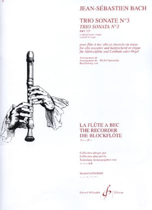Trio Sonate n° 3 BWV 527 - flûte à bec clav. BACH laflutedepan