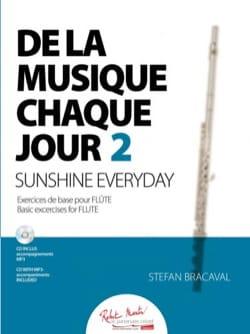 De la musique chaque jour 2 - Flûte Stefan Bracaval laflutedepan