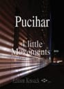 4 Little Movements Blaz Pucihar Partition laflutedepan