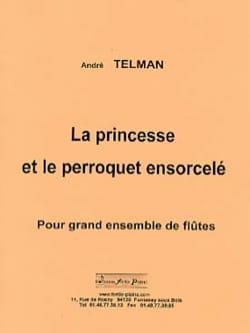 La Princesse et le Perroquet ensorcelé André Telman laflutedepan