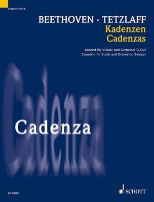 Cadences Du Concerto En Ré Maj. Op.61 - laflutedepan.com