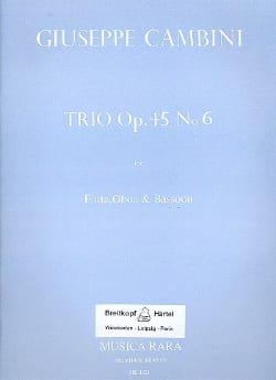 Trio op. 45 n° 6 -Flute oboe bassoon laflutedepan