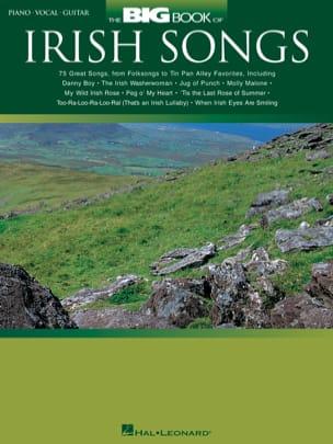 The Big Book Of Irish Songs - Partition - laflutedepan.com