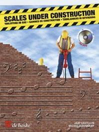 Scales Under Construction laflutedepan