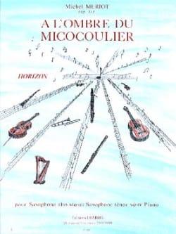 A L' Ombre du Micocoulier Michel Meriot Partition laflutedepan