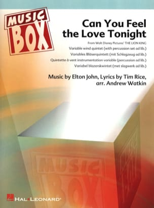 Can you feel the love tonight - Le Roi Lion - music box laflutedepan